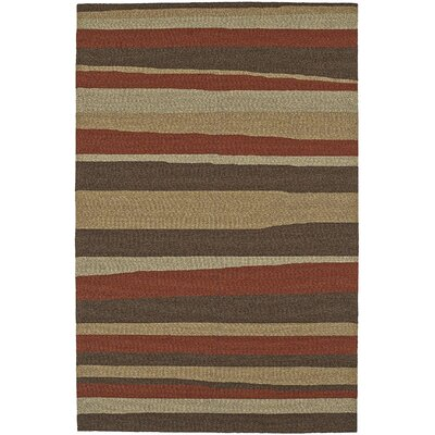 Lovitz Hand-Tufted Canyon Indoor/Outdoor Area Rug Rug Size: 8 x 10