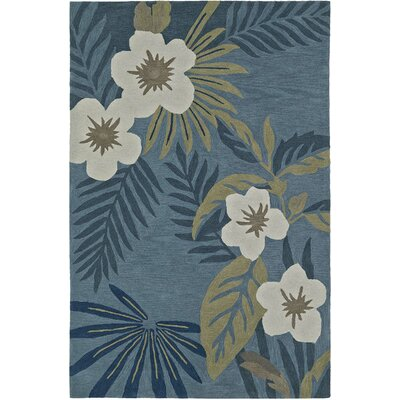 Maui Hand-Tufted Regatta Area Rug Rug Size: Rectangle 9 x 13