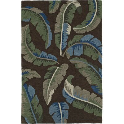Maui Hand-Tufted Chocolate Area Rug Rug Size: 36 x 56