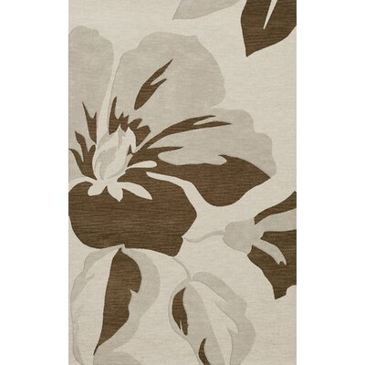 Bella Gray Area Rug Rug Size: Rectangle 10 x 14