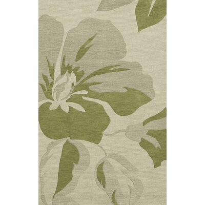 Bella Green Area Rug Rug Size: 12 x 18