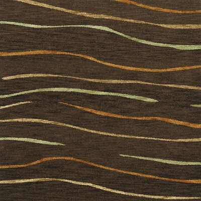 Bella Brown Area Rug Rug Size: Square 6'