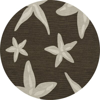 Bella Brown/Beige Area Rug Rug Size: Round 6