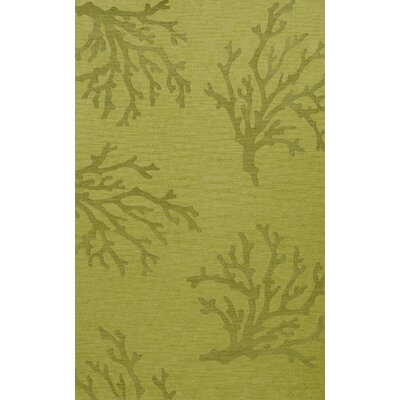Bella Green Area Rug Rug Size: Rectangle 5 x 8