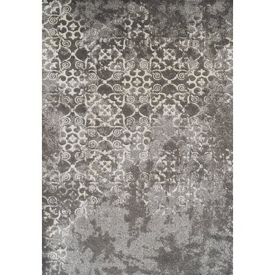 DeLorin Gray Oriental Area Rug Rug Size: Rectangle 96 x 132