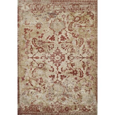 DeLorin Paprika Area Rug Rug Size: Rectangle 33 x 53