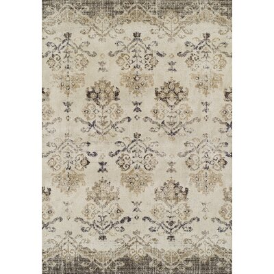 Antigua Beige Area Rug Rug Size: Rectangle 33 x 53