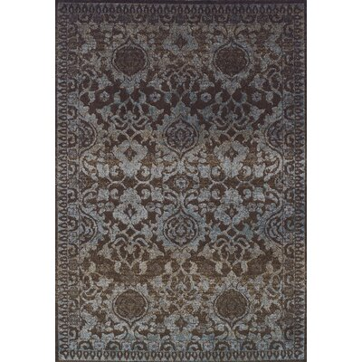 Antigua Chocolate Area Rug Rug Size: Rectangle 96 x 132
