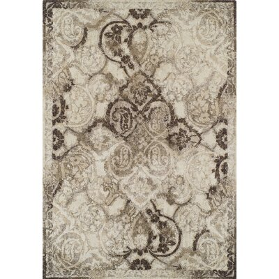Antigua Mocha Area Rug Rug Size: Rectangle 53 x 77