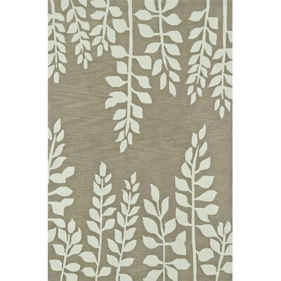 Journey Hand-Tufted Khaki Area Rug Rug Size: 36 x 56