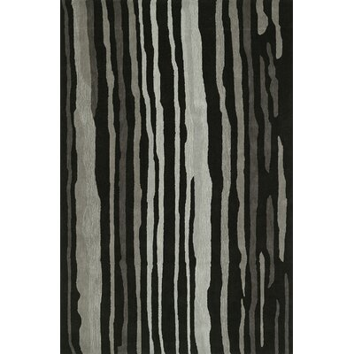 Journey Hand-Tufted Black Area Rug Rug Size: Rectangle 36 x 56