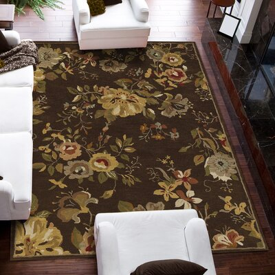 Jewel Chocolate Rug Rug Size: 36 x 56