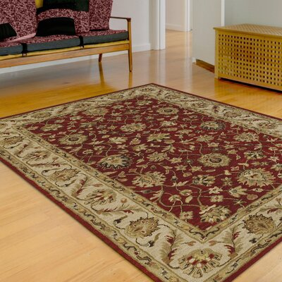Jewel Salsa Rug Rug Size: Rectangle 8 x 10