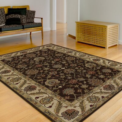 Jewel Chocolate Rug Rug Size: 5 x 8