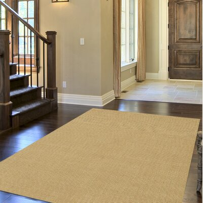 Dionne Honey Solid Rug Rug Size: 36 x 56