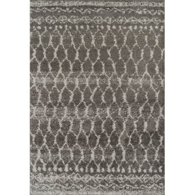 Theodora Shag Charcoal Area Rug� Rug Size: Rectangle 51 x 75