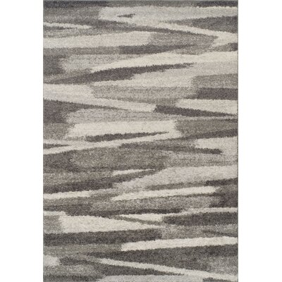 Sammie Shag Charcoal Area Rug Rug Size: Rectangle 51 x 75