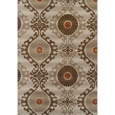 Connelly Mocha Indoor/Outdoor Area Rug� Rug Size: Rectangle 33 x 51