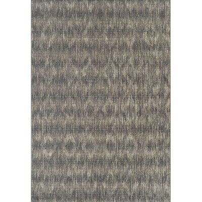 Timbia Ash Indoor/Outdoor Area Rug� Rug Size: Rectangle 51 x 7