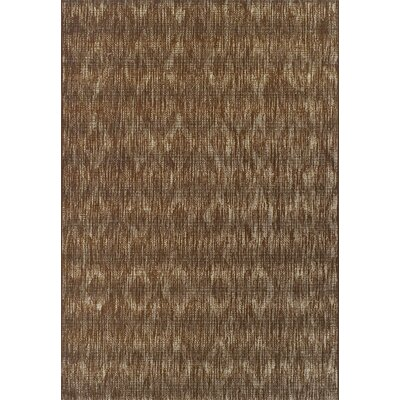 Tisha Chocolate Indoor/Outdoor Area Rug� Rug Size: Rectangle 51 x 7