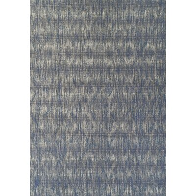 Tissir Denim Indoor/Outdoor Area Rug� Rug Size: Rectangle 51 x 7