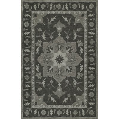 Delmy Hand-Tufted Charcoal Area Rug Rug Size: Rectangle 36 x 56