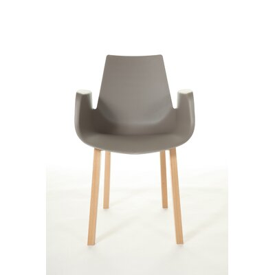 The Hordaland Arm Chair Color: Grey