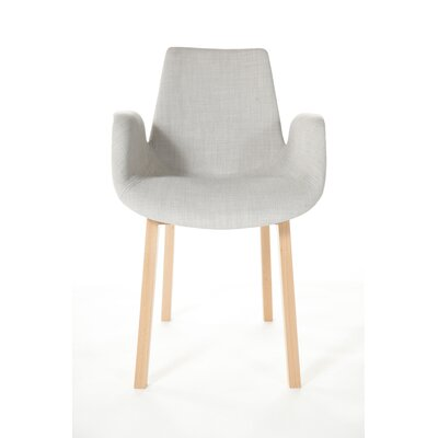The Agder Armchair Color: Gray