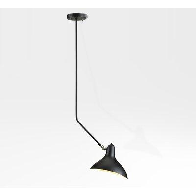 1-Light Mini Pendant Finish: Black