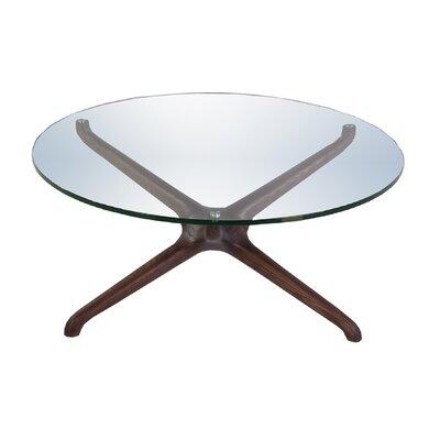 Asteroidea Coffee Table