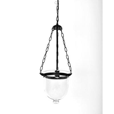 Senecaville 1-Light Mini Pendant
