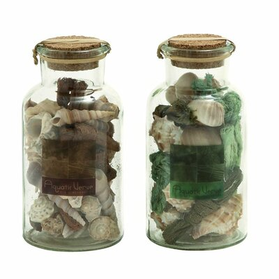 Glass Shell Mixed Decorative Bottle (Set of 2)