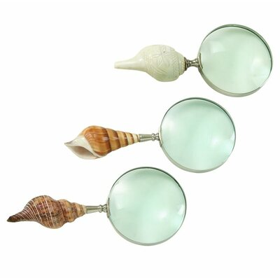 3 Piece Decorative Shell Magnify Set (Set of 3) 19099
