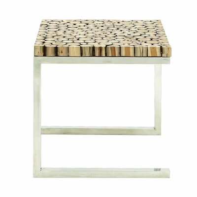 Stainless Steel and Teak End Table