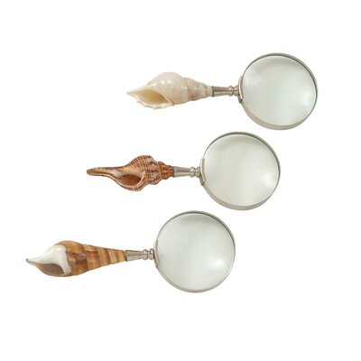 3 Piece Decorative Shell Magnify Set