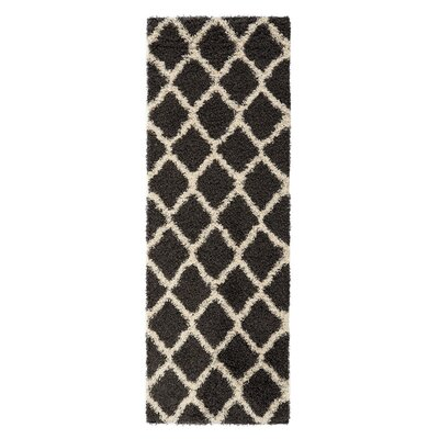 Dauphin Charcoal Indoor/Outdoor Area Rug Rug Size: Runner 27 x 8