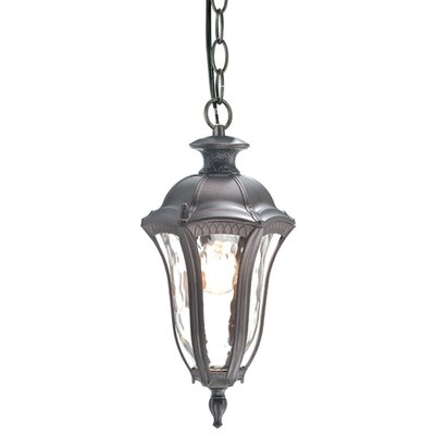 Sutton 1-Light Outdoor Hanging Lantern