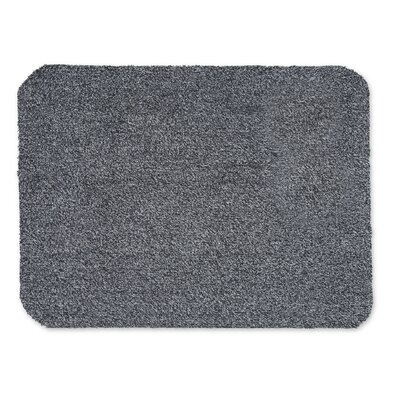 Microfiber Mud Doormat Color: Charcoal