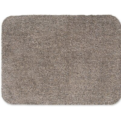 Mud Doormat Color: Taupe