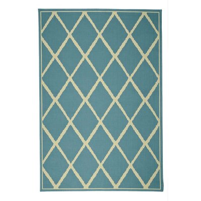 Surry Teal Indoor/Outdoor Area Rug
