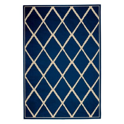 Lattice Surry Indoor/Outdoor Area Rug Rug Size: 25 x 45