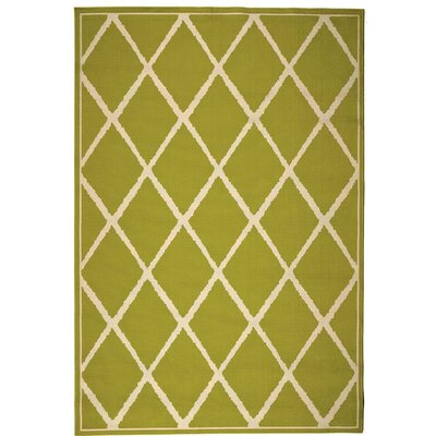 Indoor/Outdoor Green Area Rug Rug Size: 25 x 45