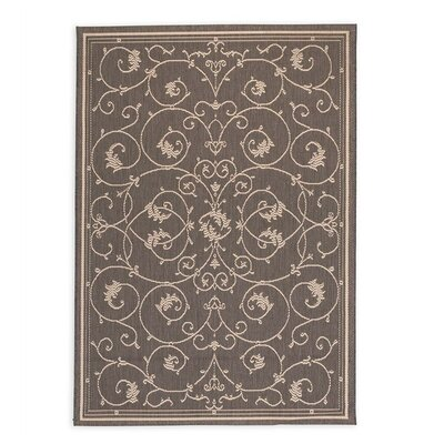 Veranda Scroll Indoor/Outdoor Area Rug Rug Size: 39 x 53