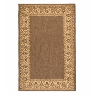 Veranda Brown Indoor/Outdoor Area Rug Rug Size: Rectangle 76 X 109