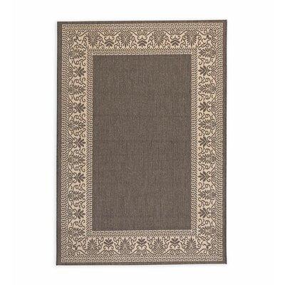 Veranda Scroll Gray Indoor/Outdoor Area Rug Rug Size: Rectangle 39 x 55