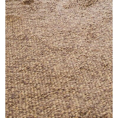 Mud Brown Area Rug Rug Size: 33 x 25