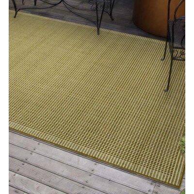 Solid Moss Indoor/Outdoor Area Rug
