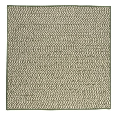 Outdoor Houndstooth Tweed Leaf Green Rug Rug Size: Square 12