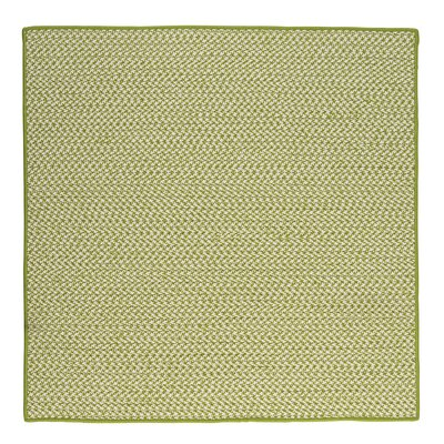 Outdoor Houndstooth Tweed Lime Area Rug Rug Size: Square 12