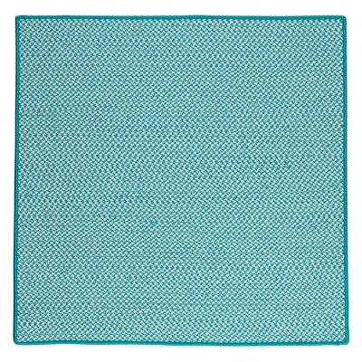 Outdoor Houndstooth Tweed Area Rug Rug Size: 8 Square